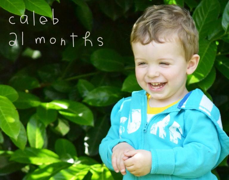 21 months
